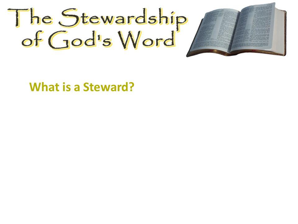 What is a Steward