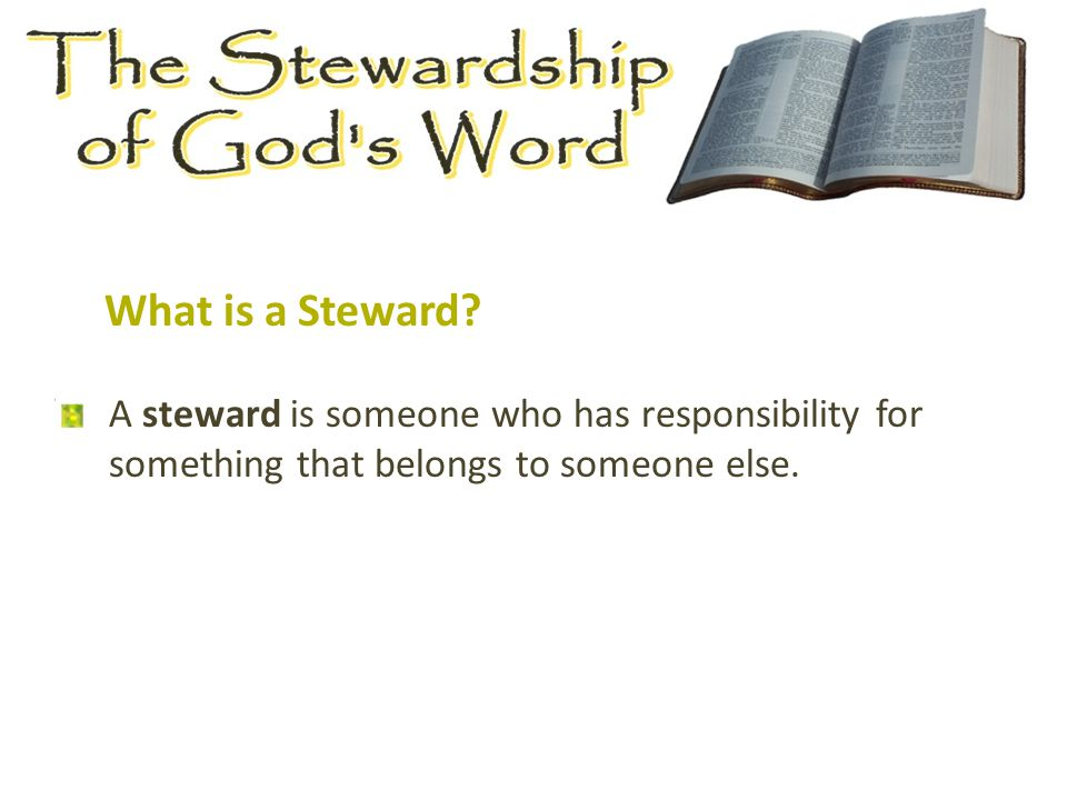 A steward is someone who has responsibility for something that belongs to someone else.