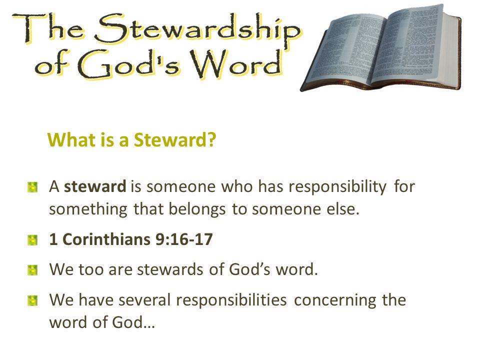 What is a Steward.