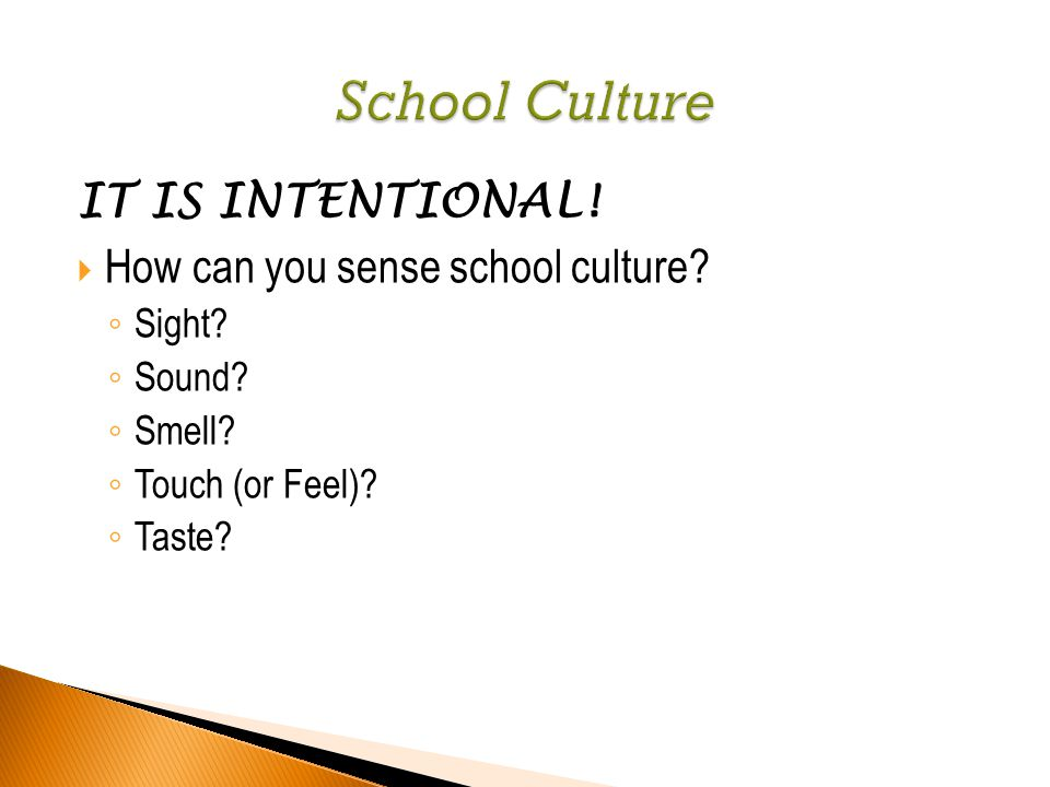 IT IS INTENTIONAL!  How can you sense school culture? ◦ Sight? ◦ Sound? ◦ Smell? ◦ Touch (or Feel)? ◦ Taste?