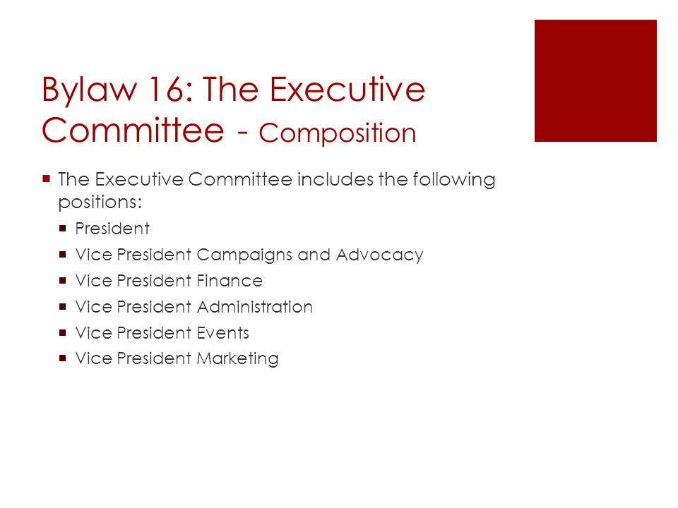 Bylaw 16: The Executive Committee - Composition  The Executive Committee includes the following positions:  President  Vice President Campaigns and Advocacy  Vice President Finance  Vice President Administration  Vice President Events  Vice President Marketing
