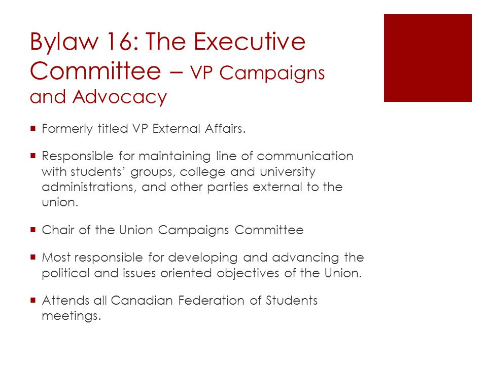 Bylaw 16: The Executive Committee – VP Campaigns and Advocacy  Formerly titled VP External Affairs.