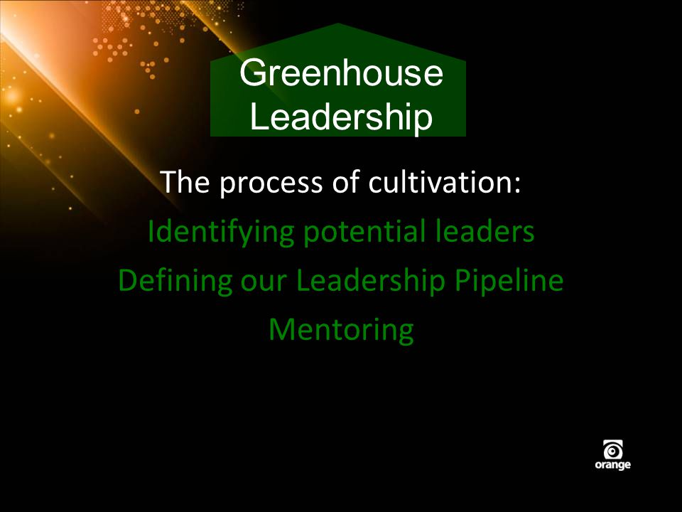 The process of cultivation: Identifying potential leaders Defining our Leadership Pipeline Mentoring Greenhouse Leadership