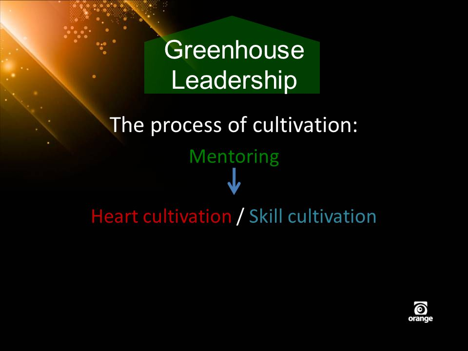 The process of cultivation: Mentoring Heart cultivation / Skill cultivation Greenhouse Leadership
