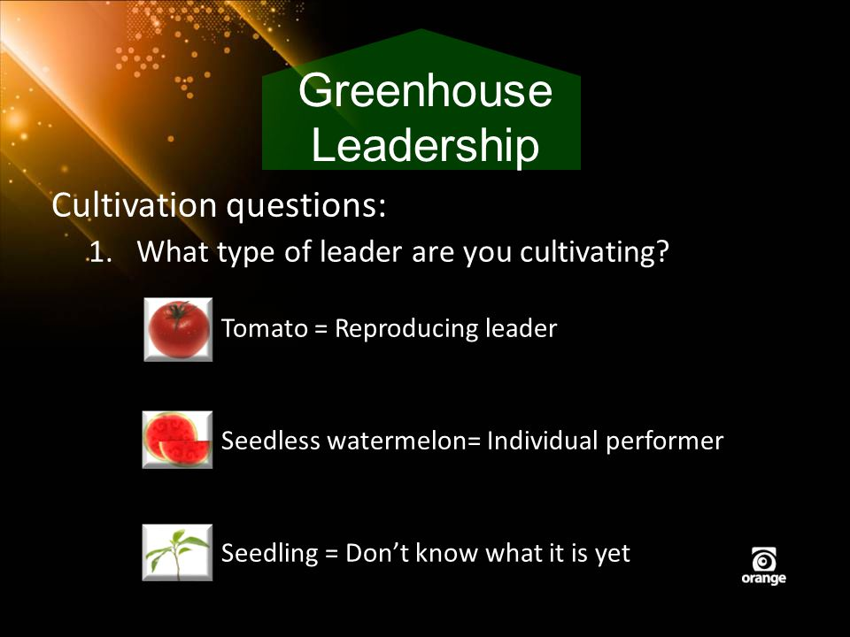 Cultivation questions: 1.What type of leader are you cultivating? Tomato = Reproducing leader Seedless watermelon= Individual performer Seedling = Don