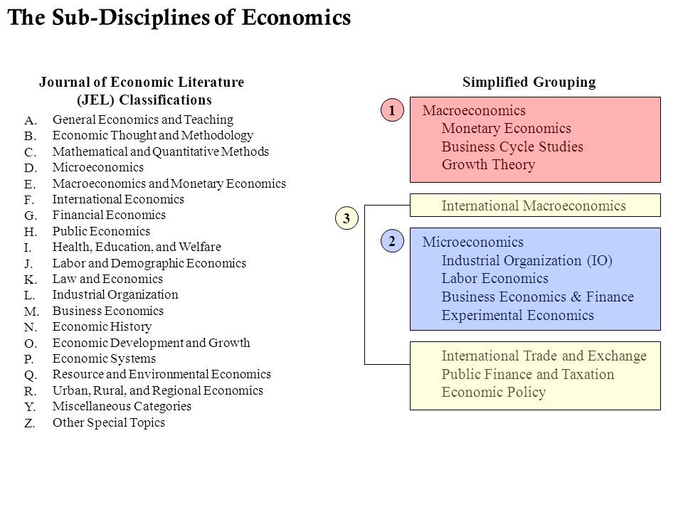 Macroeconomics Monetary Economics Business Cycle Studies Growth Theory International Macroeconomics Microeconomics Industrial Organization (IO) Labor