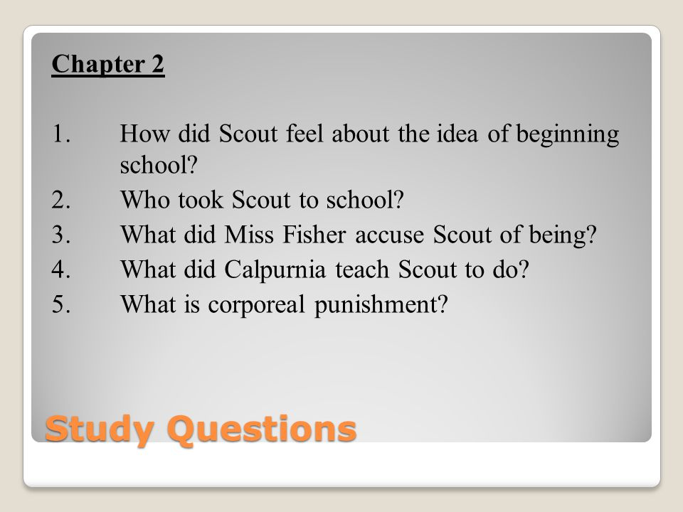 Study Questions Chapter 2 1. How did Scout feel about the idea of beginning school? 2. Who took Scout to school? 3. What did Miss Fisher accuse Scout