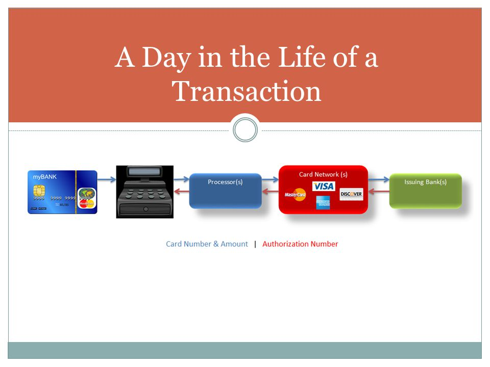 A Day in the Life of a Transaction