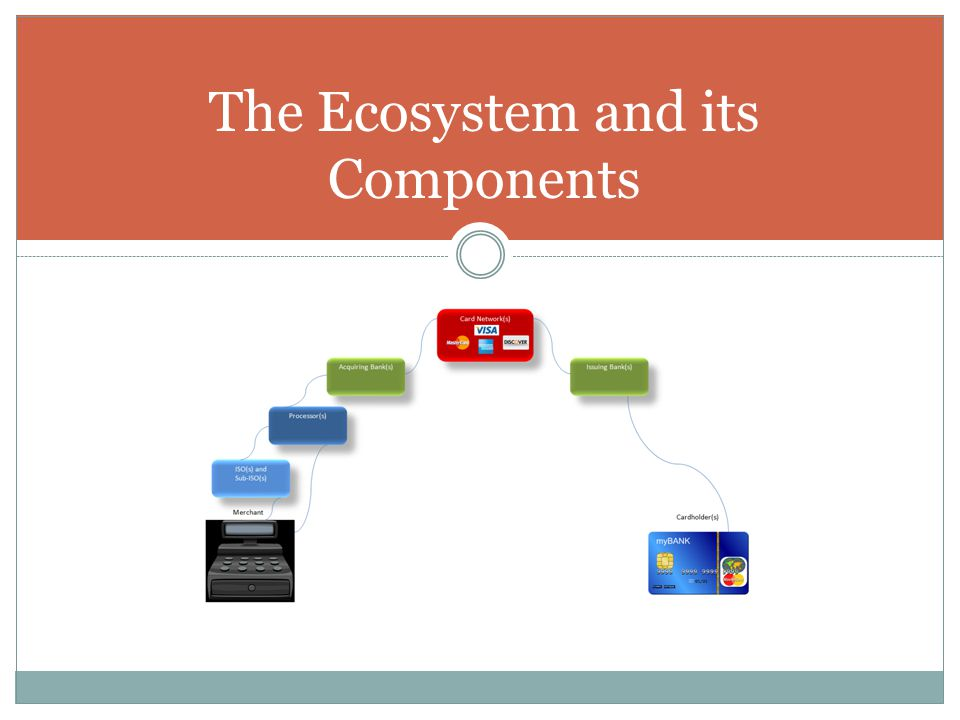 The Ecosystem and its Components
