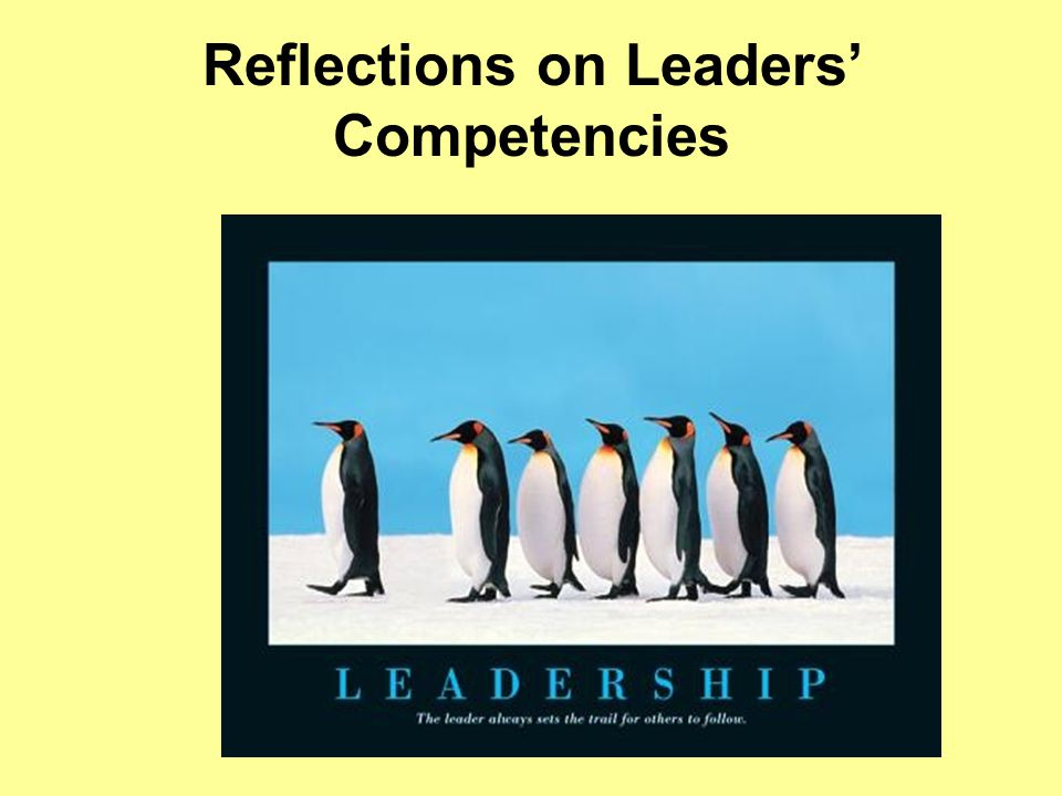 Reflections on Leaders' Competencies
