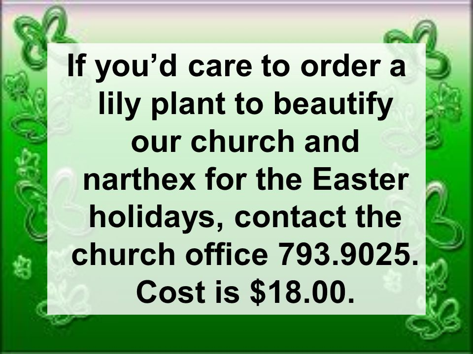 If you'd care to order a lily plant to beautify our church and narthex for the Easter holidays, contact the church office 793.9025.
