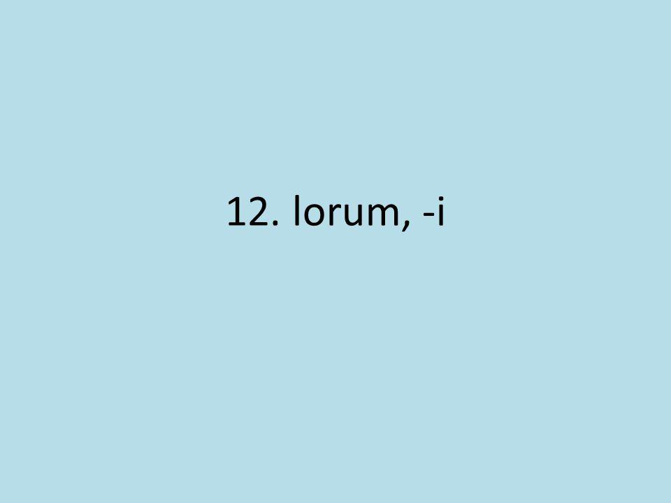 12. lorum, -i