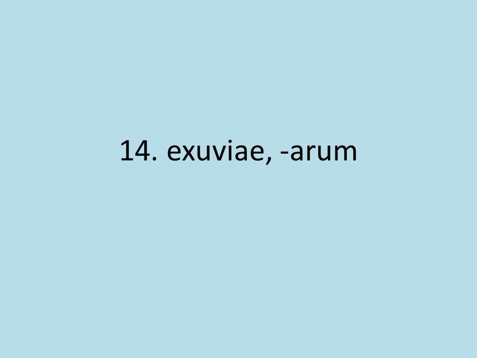 14. exuviae, -arum