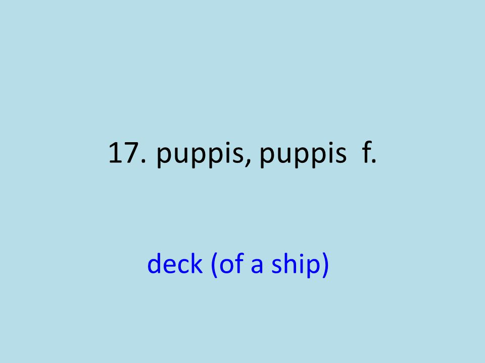 deck (of a ship)