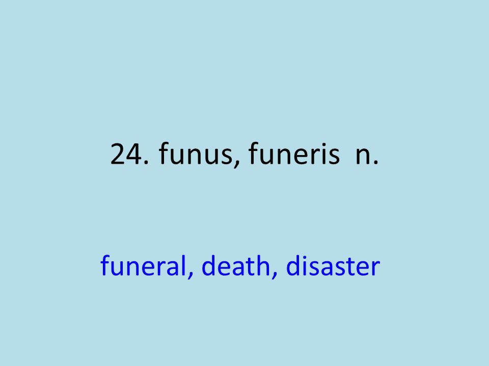 funeral, death, disaster