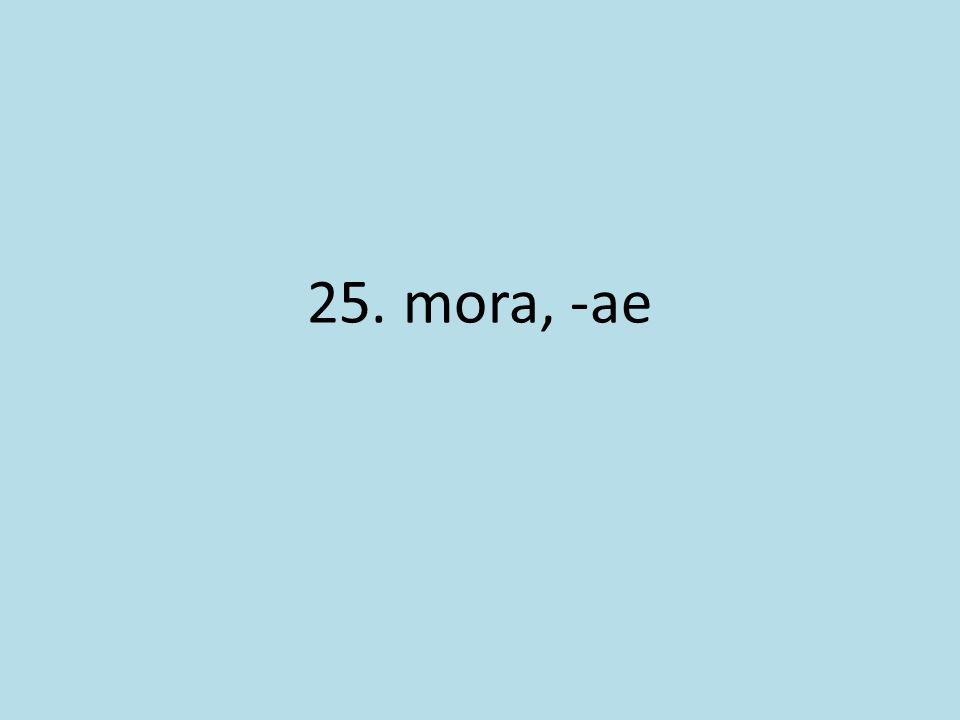 25. mora, -ae