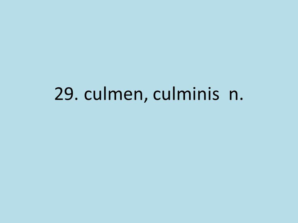 29. culmen, culminis n.
