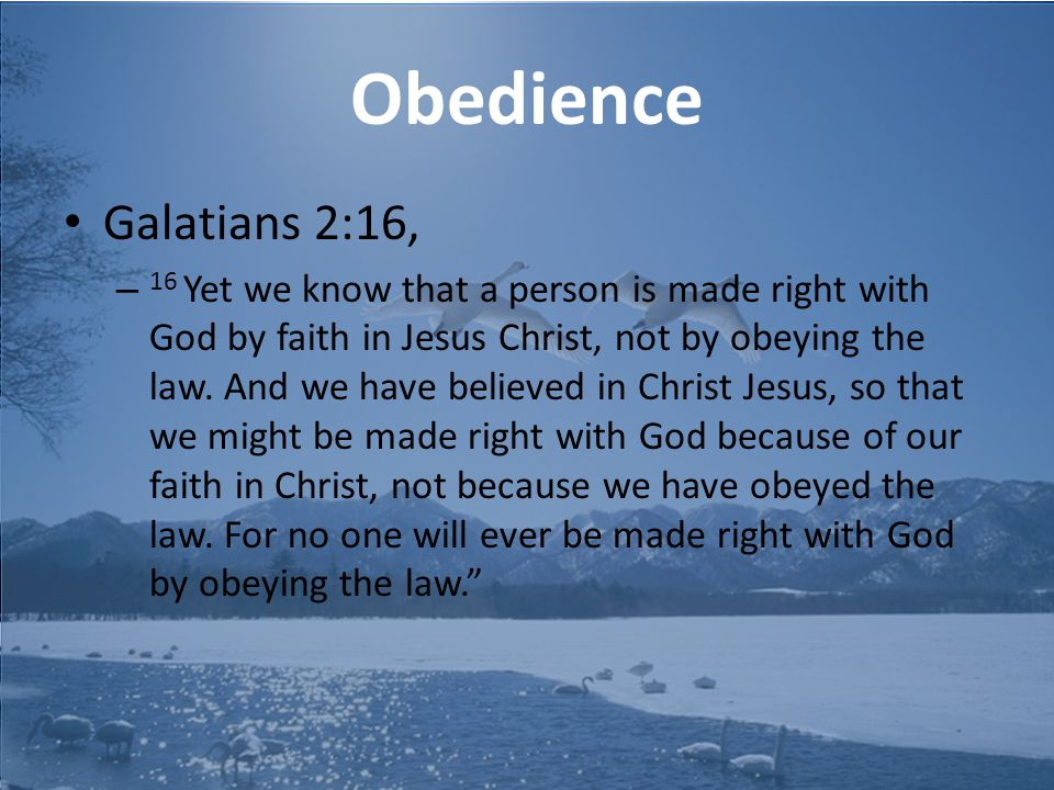 Obedience Galatians 2:16, – 16 Yet we know that a person is made right with God by faith in Jesus Christ, not by obeying the law.