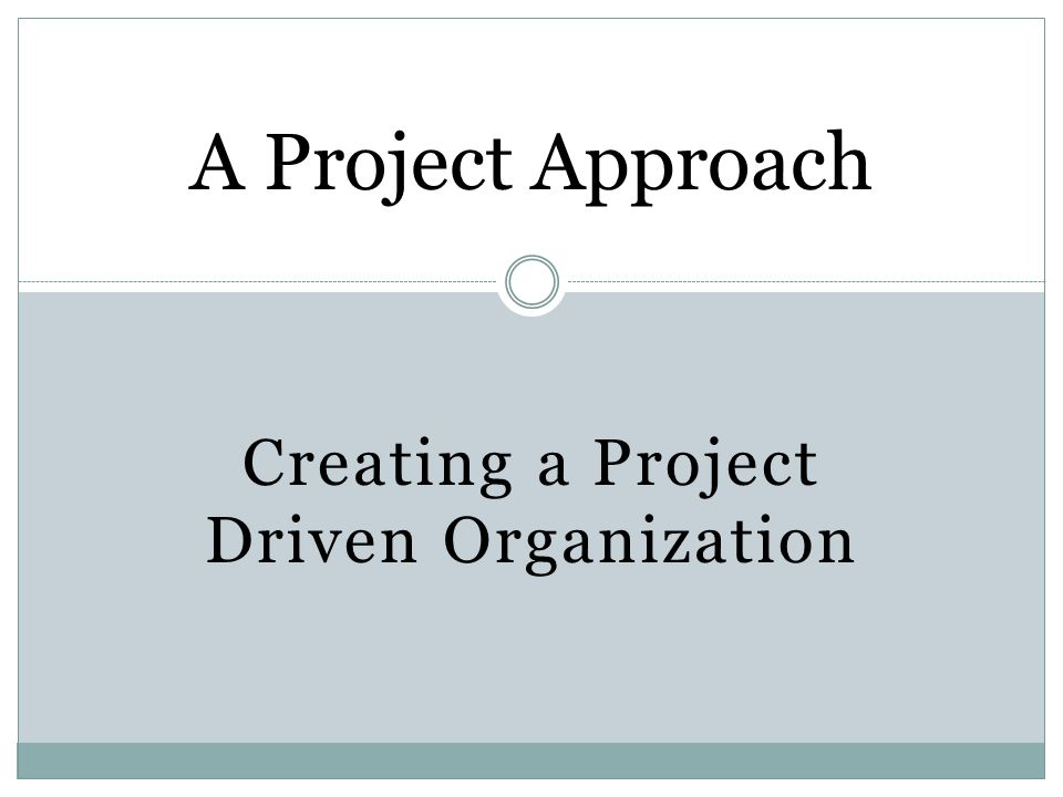 A Project Approach Creating a Project Driven Organization