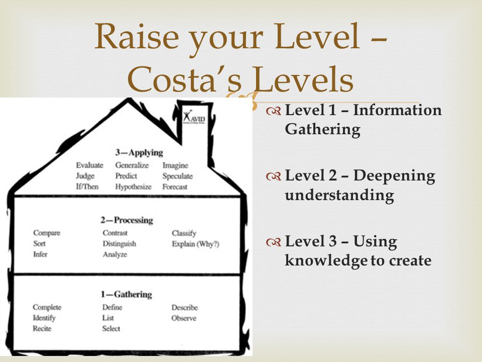  Raise your Level – Costa's Levels  Level 1 – Information Gathering  Level 2 – Deepening understanding  Level 3 – Using knowledge to create