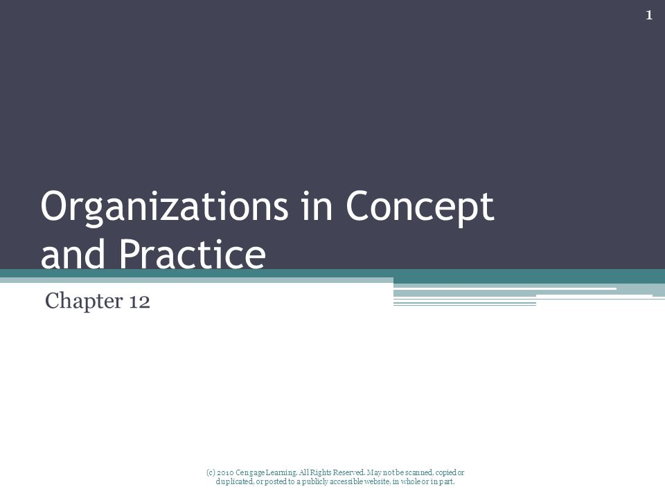 Organizations in Concept and Practice Chapter 12 1 (c) 2010 Cengage Learning.