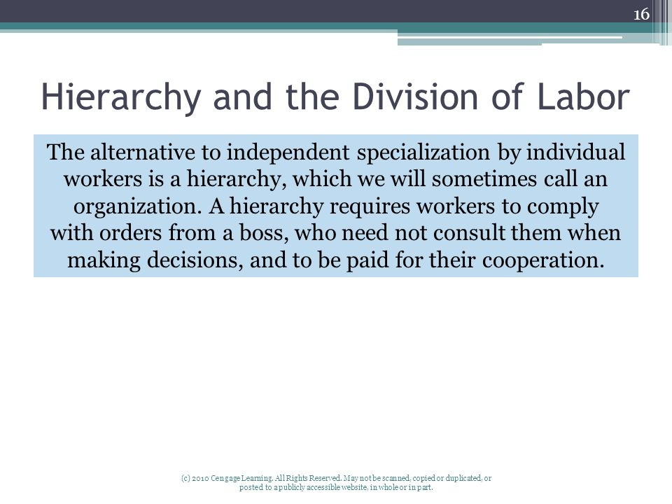 Hierarchy and the Division of Labor (c) 2010 Cengage Learning.