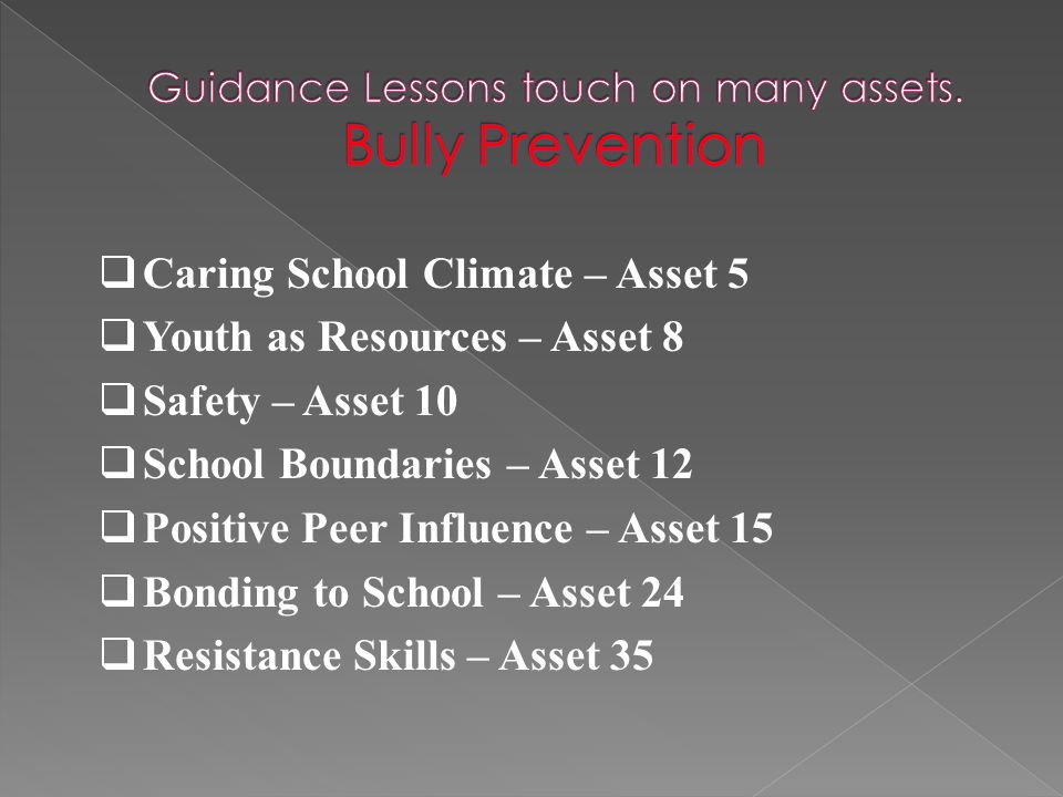  Caring School Climate – Asset 5  Youth as Resources – Asset 8  Safety – Asset 10  School Boundaries – Asset 12  Positive Peer Influence – Asset 15  Bonding to School – Asset 24  Resistance Skills – Asset 35