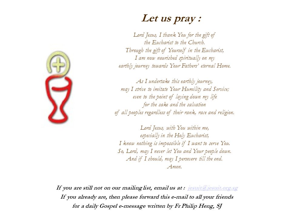 Let us pray : Lord Jesus, I thank You for the gift of the Eucharist to the Church. Through the gift of Yourself in the Eucharist, I am now nourished s