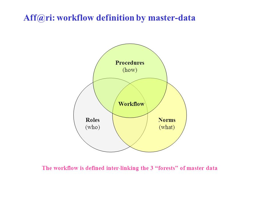 Aff@ri: workflow definition by master-data Roles (who) Procedures (how) Norms (what) Workflow The workflow is defined inter-linking the 3 forests of master data