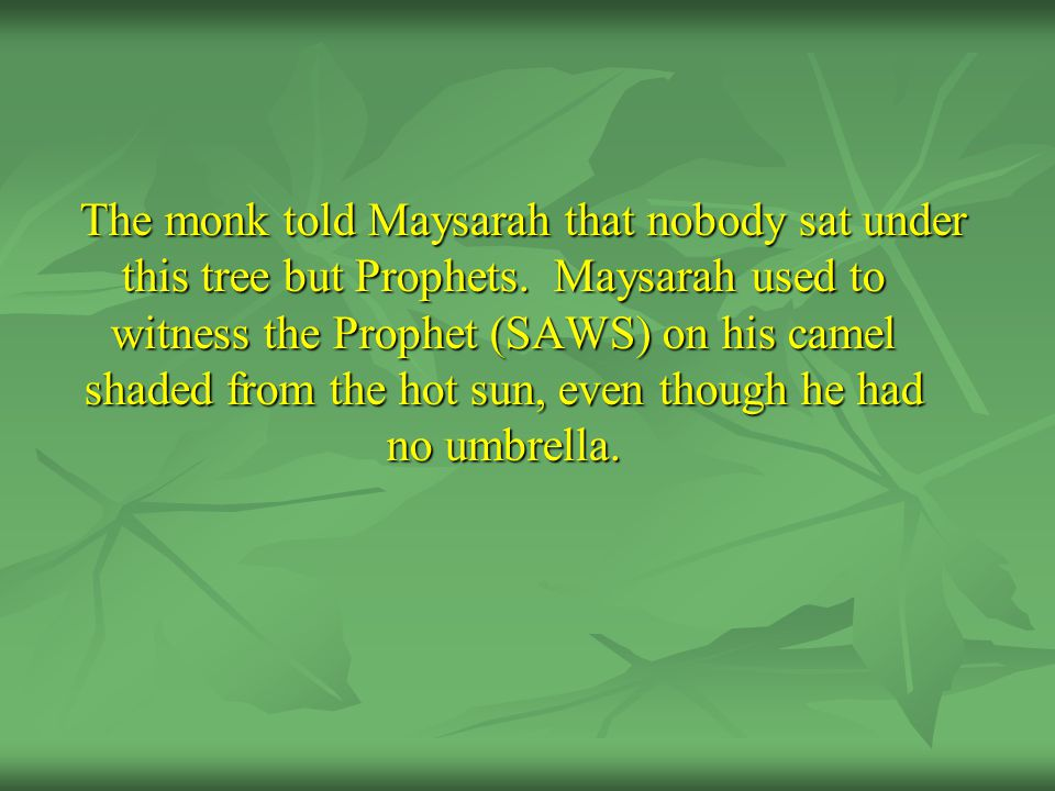 The monk told Maysarah that nobody sat under this tree but Prophets. Maysarah used to witness the Prophet (SAWS) on his camel shaded from the hot sun,