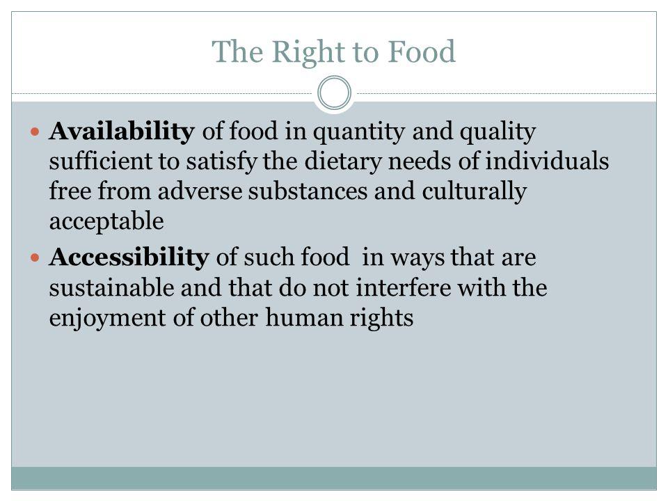 Literature Michal Windfuhr & Jennie Jonsen (FIAN): Food Sovereignty.
