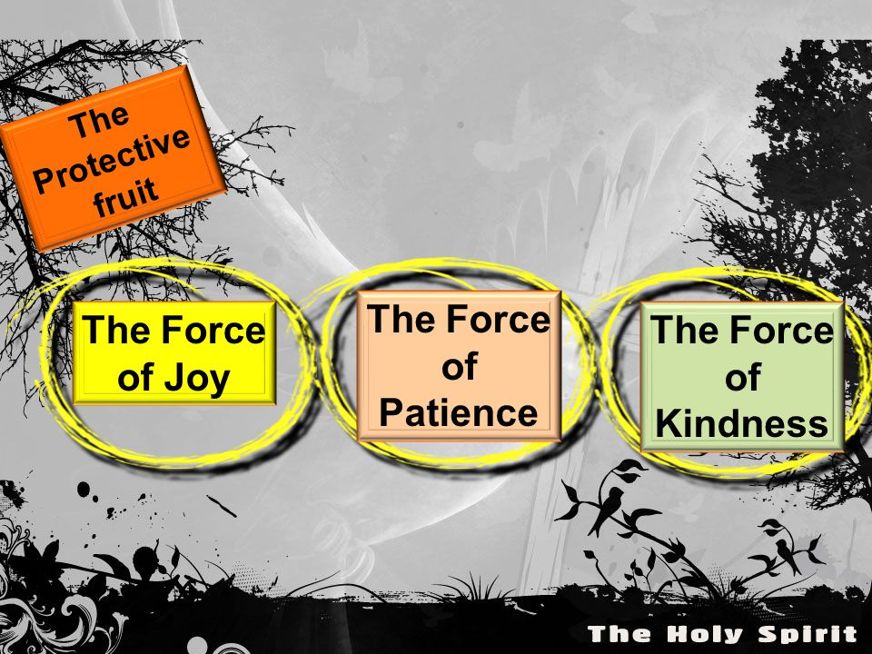 The Protective fruit The Force of Joy The Force of Patience The Force of Kindness