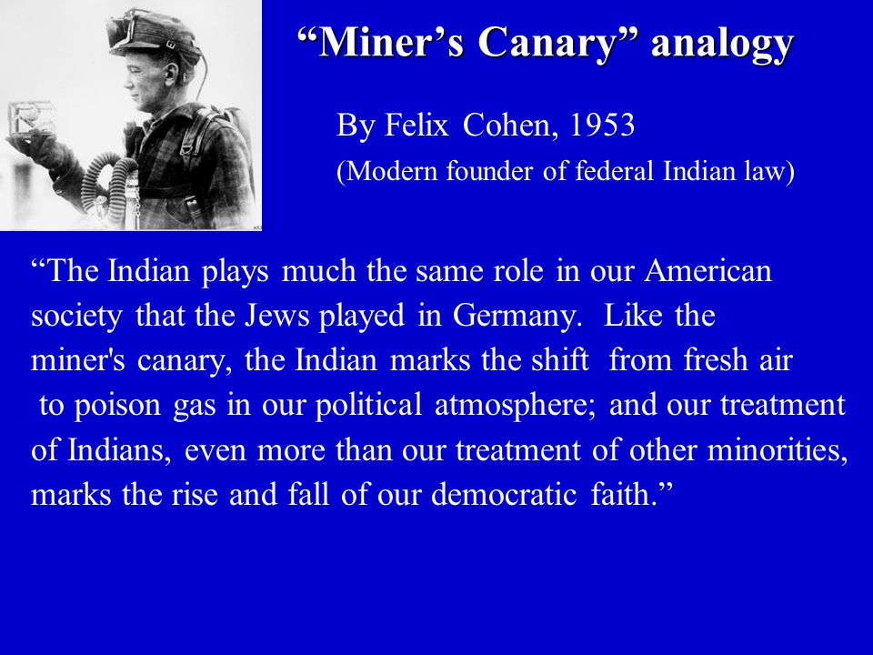 Miner's Canary analogy The Indian plays much the same role in our American society that the Jews played in Germany.
