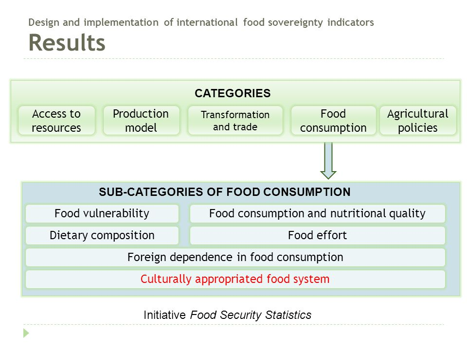 Design and implementation of international food sovereignty indicators Results SUB-CATEGORIES OF FOOD CONSUMPTION Food vulnerability Dietary composition Culturally appropriated food system Food consumption and nutritional quality Foreign dependence in food consumption Food effort Access to resources Production model Transformation and trade Food consumption Agricultural policies CATEGORIES Initiative Food Security Statistics