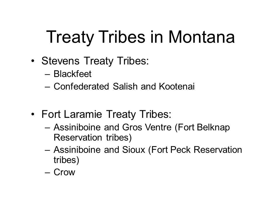 Treaty Tribes in Montana Stevens Treaty Tribes: –Blackfeet –Confederated Salish and Kootenai Fort Laramie Treaty Tribes: –Assiniboine and Gros Ventre (Fort Belknap Reservation tribes) –Assiniboine and Sioux (Fort Peck Reservation tribes) –Crow