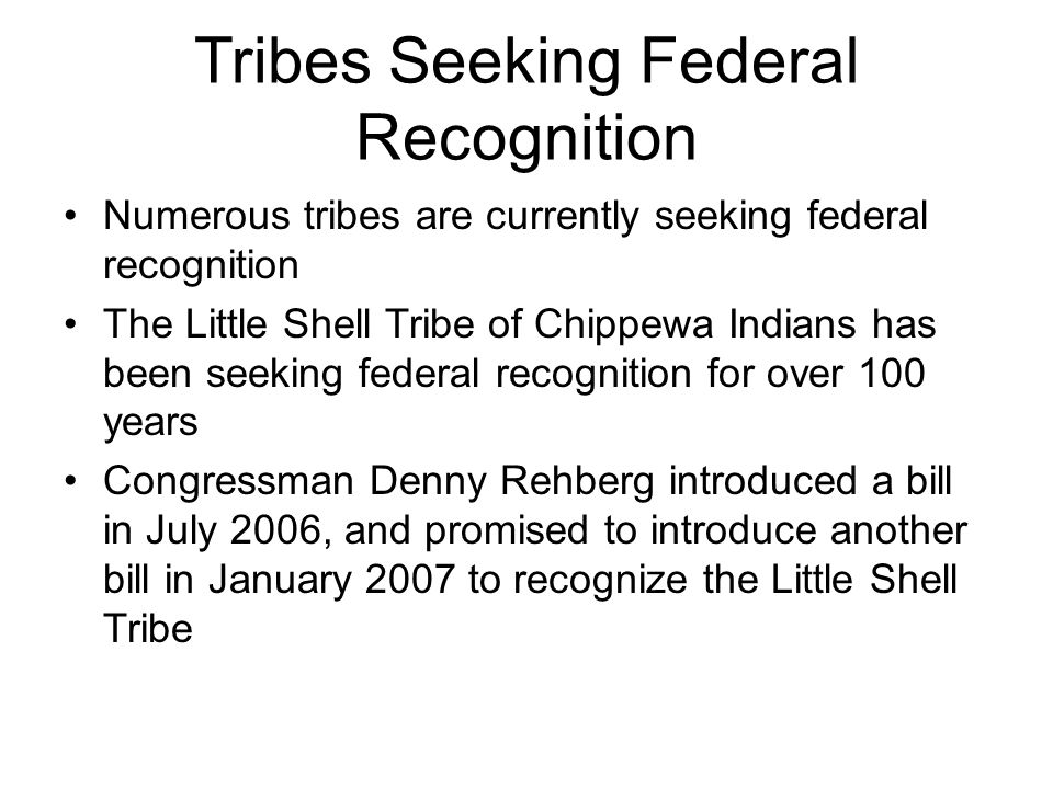 Tribes Seeking Federal Recognition Numerous tribes are currently seeking federal recognition The Little Shell Tribe of Chippewa Indians has been seeking federal recognition for over 100 years Congressman Denny Rehberg introduced a bill in July 2006, and promised to introduce another bill in January 2007 to recognize the Little Shell Tribe