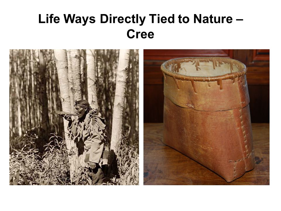 Life Ways Directly Tied to Nature – Cree