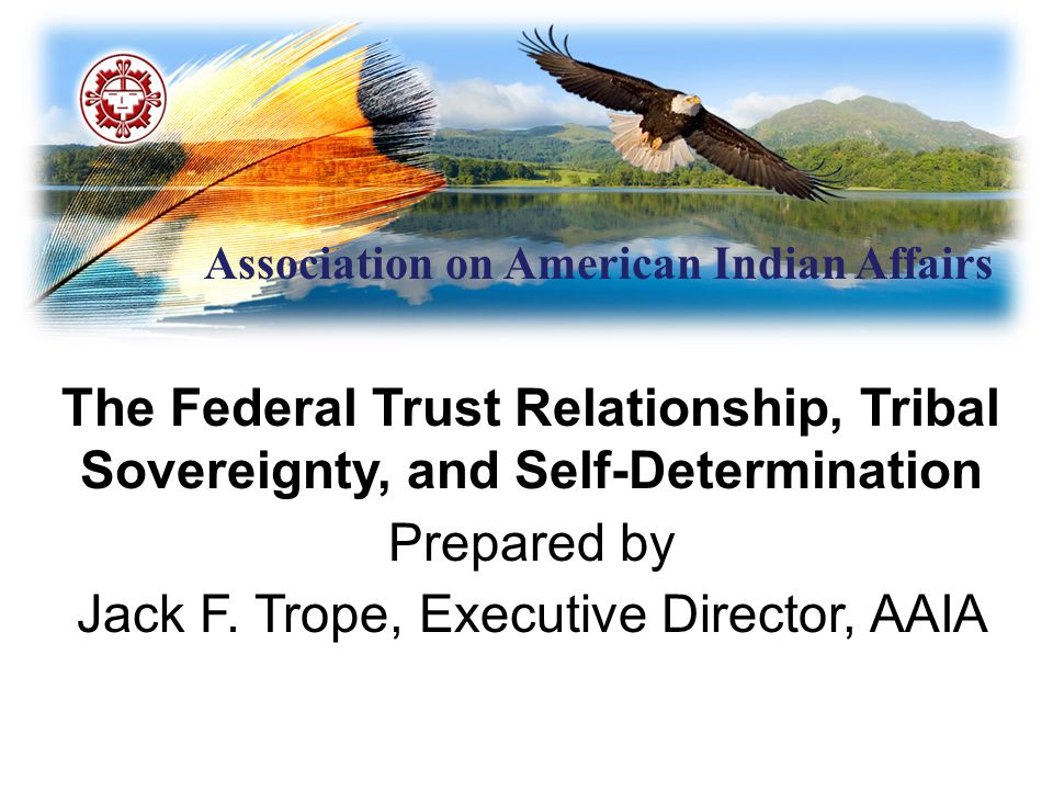 Association on American Indian Affairs Executive Order 13,175 Recognizes: Unique relationship (government-to-government) relationship between federal government and Indian tribes.