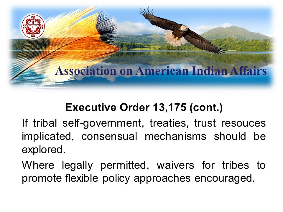 Association on American Indian Affairs Executive Order 13,175 (cont.) If tribal self-government, treaties, trust resouces implicated, consensual mecha