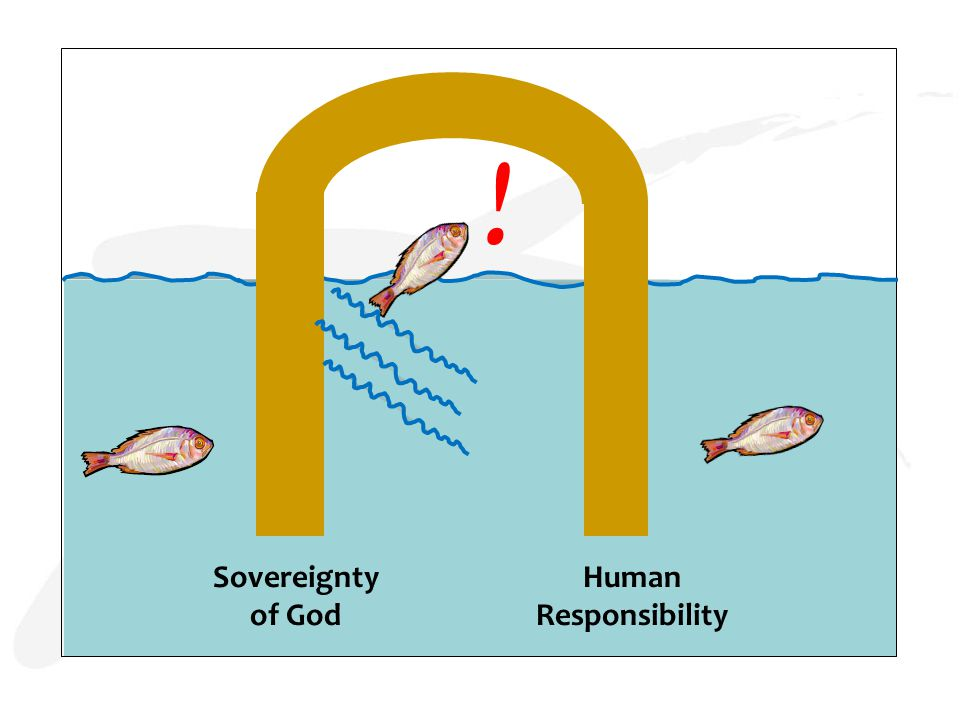 Sovereignty of God Human Responsibility !
