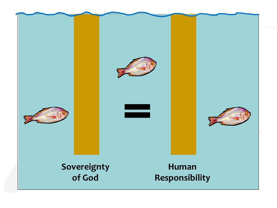 Sovereignty of God Human Responsibility