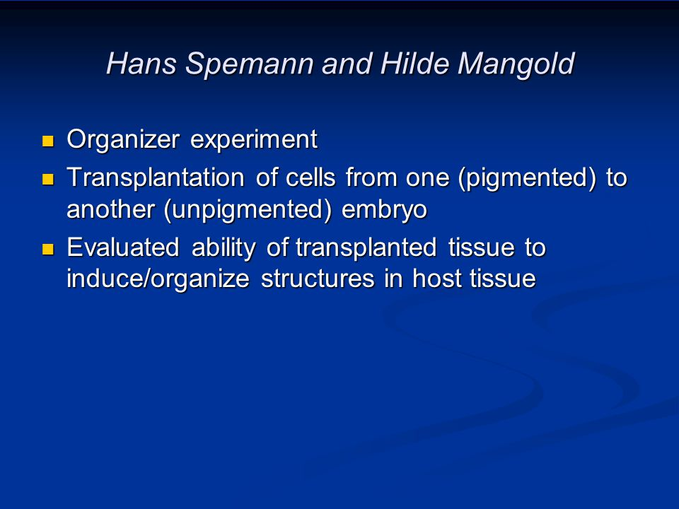 Hans Spemann and Hilde Mangold Organizer experiment Organizer experiment Transplantation of cells from one (pigmented) to another (unpigmented) embryo Transplantation of cells from one (pigmented) to another (unpigmented) embryo Evaluated ability of transplanted tissue to induce/organize structures in host tissue Evaluated ability of transplanted tissue to induce/organize structures in host tissue