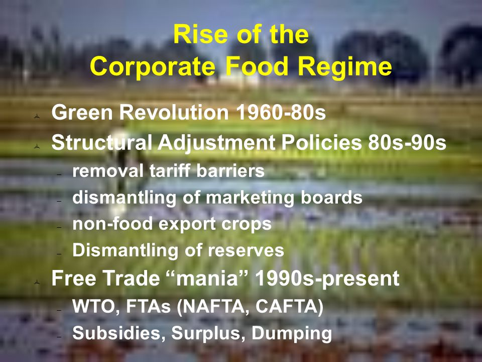Rise of the Corporate Food Regime  Green Revolution 1960-80s  Structural Adjustment Policies 80s-90s  removal tariff barriers  dismantling of marketing boards  non-food export crops  Dismantling of reserves  Free Trade mania 1990s-present  WTO, FTAs (NAFTA, CAFTA)  Subsidies, Surplus, Dumping
