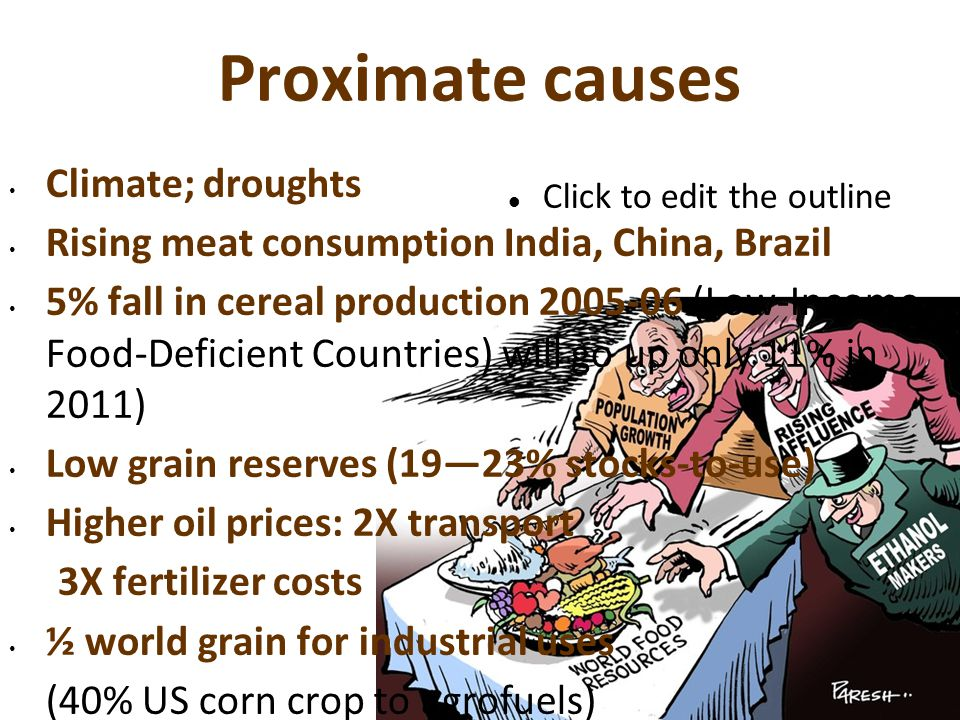Root Causes  Vulnerable food system:  91% cropland cotton, maize, wheat, rice & soy  Economic shock  Environmental shock  Industrial Agri-foods Complex  Grain traders/processors  Seed & genetic engineering  Retail & distributors