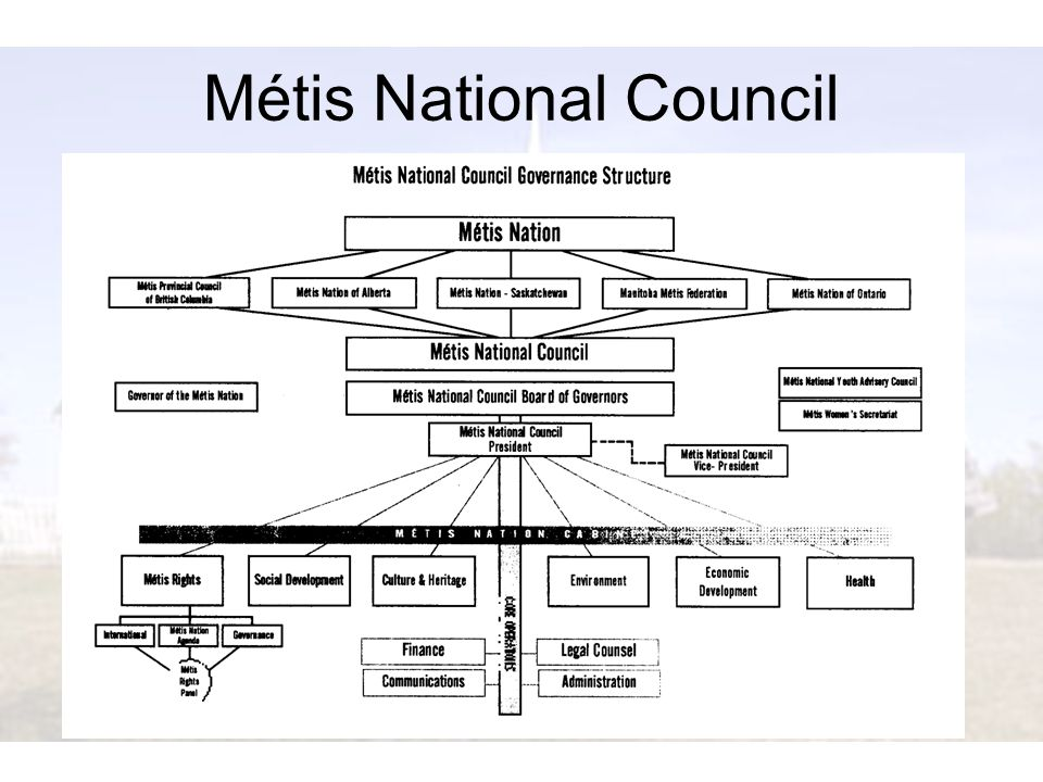 Métis National Council