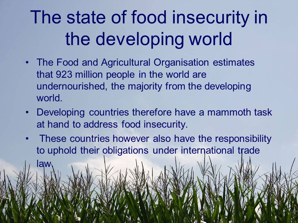 The state of food insecurity in the developing world Over a quarter of the WTO membership is comprised of countries that suffer from food insecurity.
