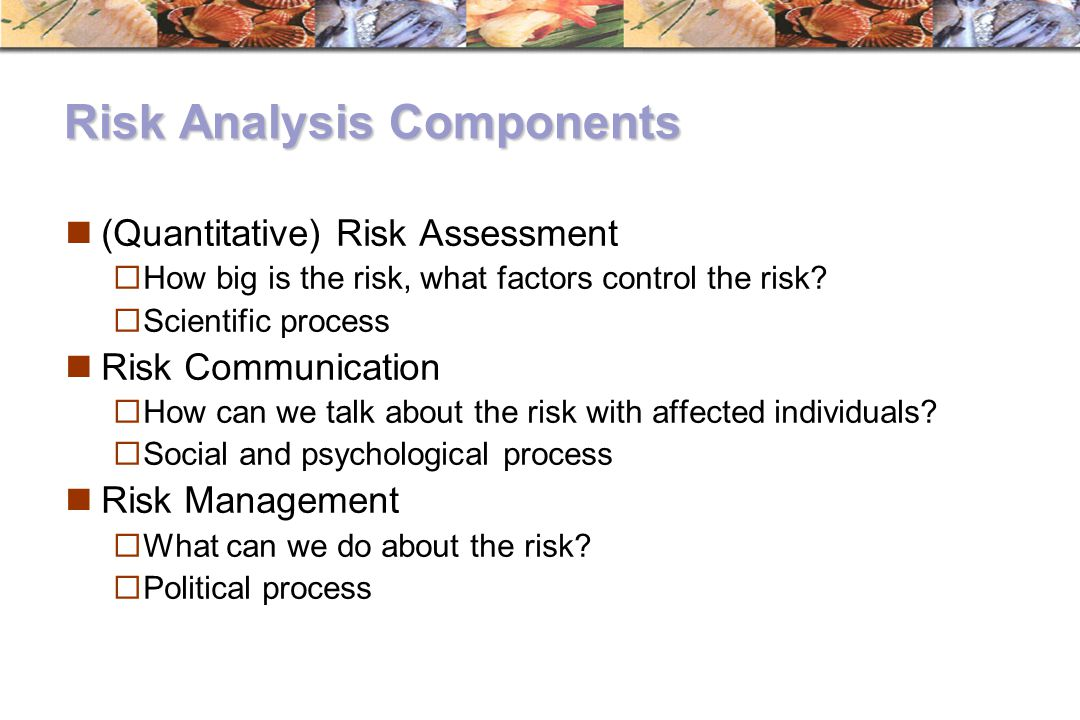 Risk Analysis Components (Quantitative) Risk Assessment  How big is the risk, what factors control the risk?  Scientific process Risk Communication