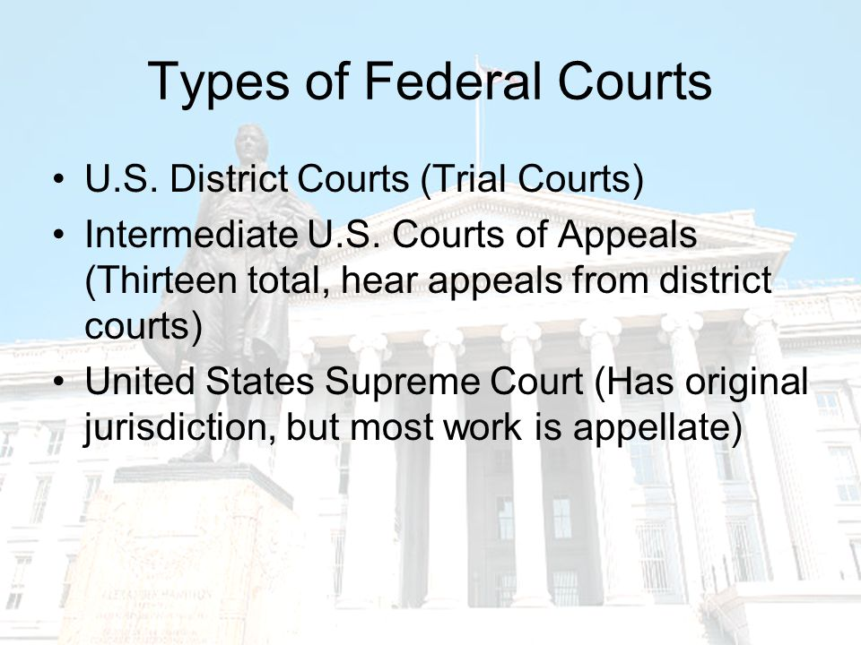 The Federal Court System Dual court system (state and federal).