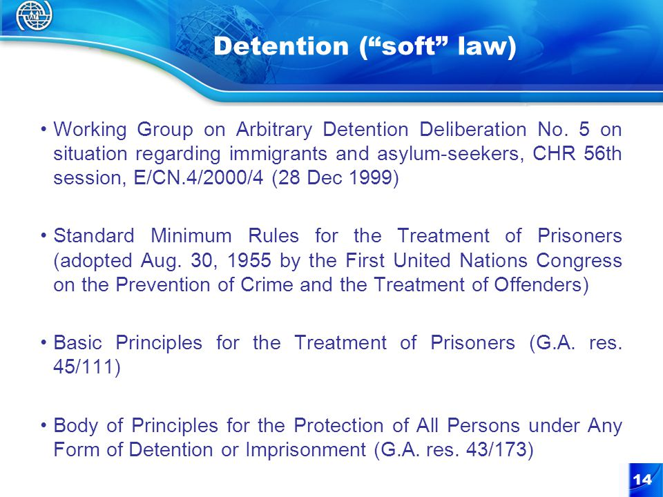 14 Detention ( soft law) Working Group on Arbitrary Detention Deliberation No.