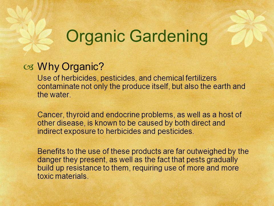Organic Gardening  Why Organic.